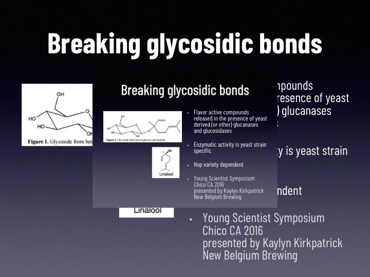 Brynildson Slide11